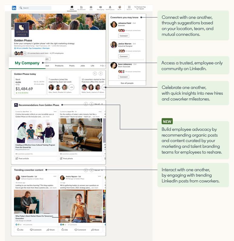 Saiba mais sobre a NOVA Guia Minha Empresa nas Linkedin Pages - Linkedin para Empresas - Pedro Caramez - Linked2Power - 2